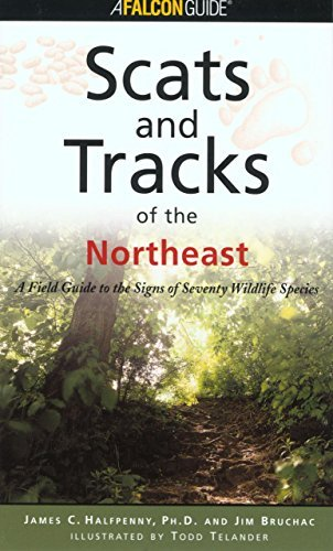 James Halfpenny Scats And Tracks Of The Northeast