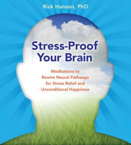 Rick Hanson Stress Proof Your Brain Meditations To Rewire Neural Pathways For Stress