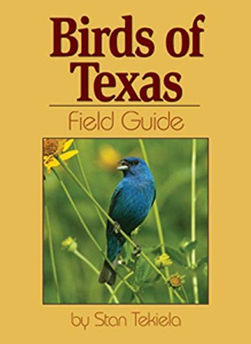 Stan Tekiela Birds Of Texas Field Guide