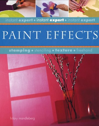 Hilary Mandleberg Instant Expert Paint Effects