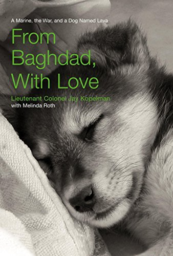 Jay Kopelman From Baghdad With Love A Marine The War And A Dog Named Lava