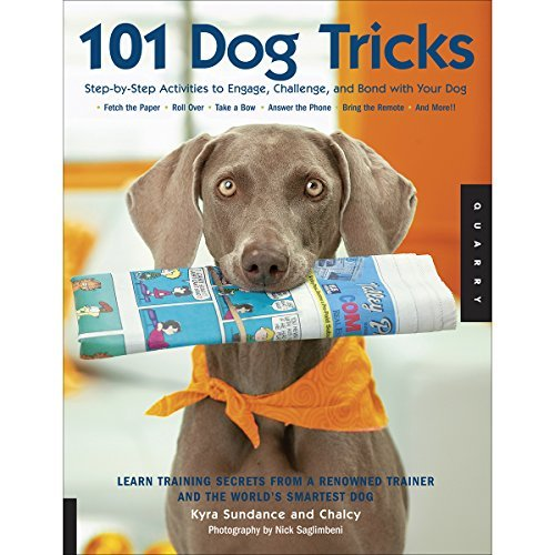 Kyra Sundance 101 Dog Tricks Step By Step Activities To Engage Challenge And