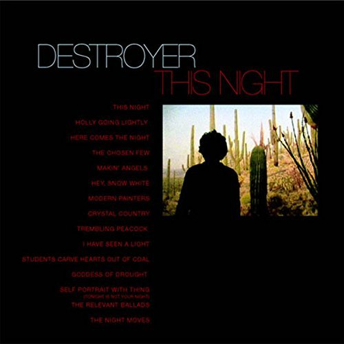 Destroyer This Night