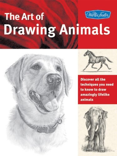 Cindy Smith The Art Of Drawing Animals