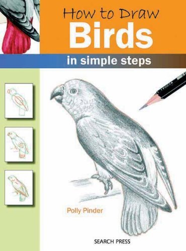 Polly Pinder How To Draw Birds In Simple Steps