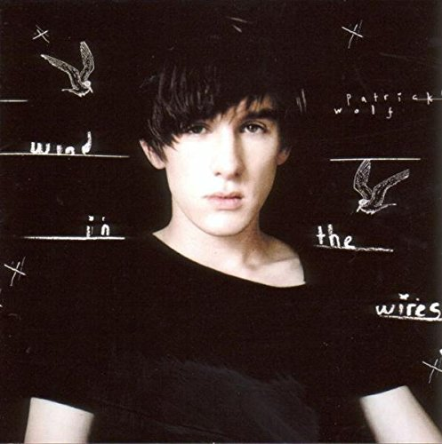 Patrick Wolf Wind In The Wires Import Gbr