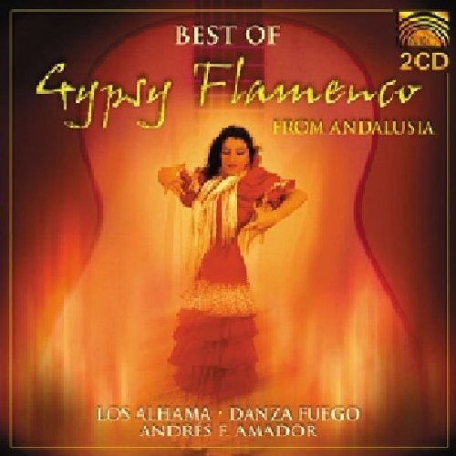 Best Of Gypsy Flamenco Best Of Gypsy Flamenco Import Gbr 2 CD Set