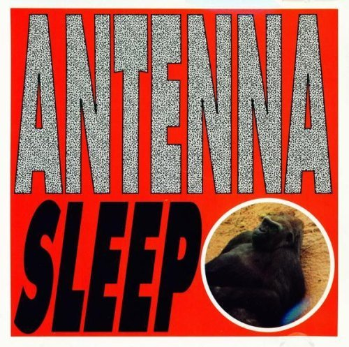 Antenna Sleep
