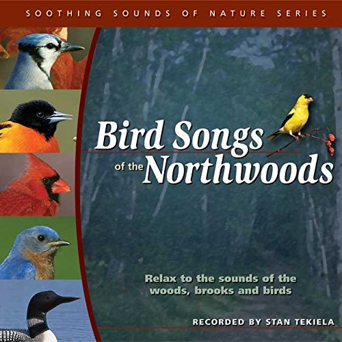Stan Tekiela Bird Songs Of The Northwoods