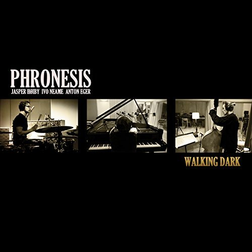 Phronesis Walking Dark