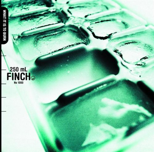 Finch What It Is To Burn