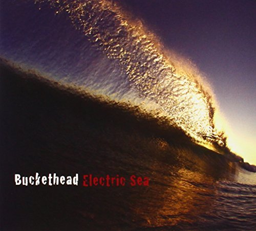 Buckethead Electric Sea