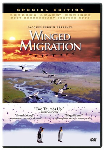 Winged Migration Winged Migration Clr Ws G