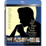 You Will Meet A Tall Dark Stra Hopkins Jones Punch Banderas B Blu Ray Ws R