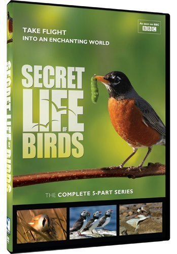 Secret Life Of Birds 5 Part Se Secret Life Of Birds 5 Part Se Ws Tvg 2 DVD