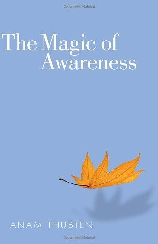 Anam Thubten Magic Of Awareness The