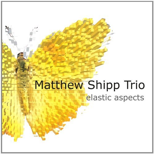 Matthew Shipp Elastic Aspects