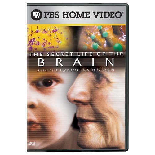 Secret Life Of The Brain Secret Life Of The Brain Nr 3 DVD