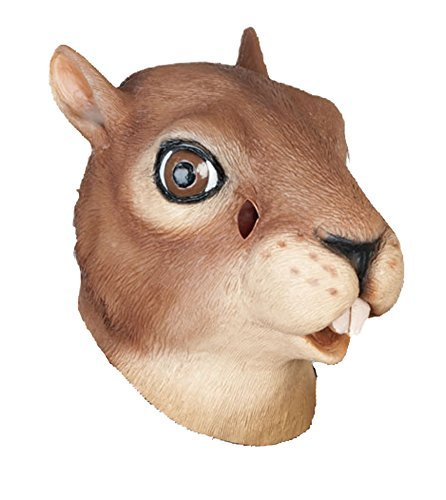 Novelty Squirrel Mask 3 Case