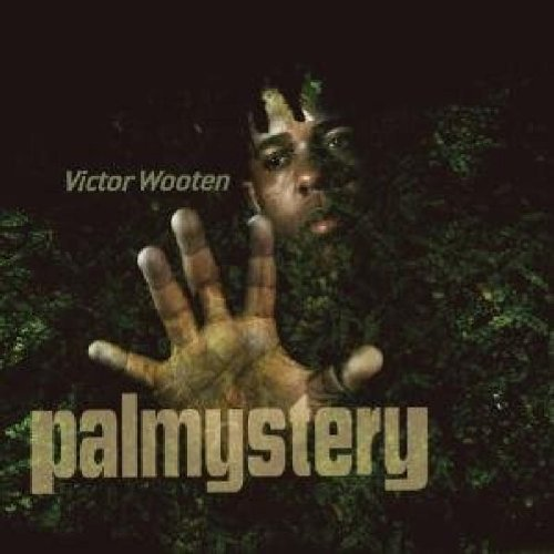 Victor Wooten Palmystery