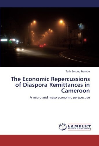 Tarh Besong Frambo The Economic Repercussions Of Diaspora Remittances