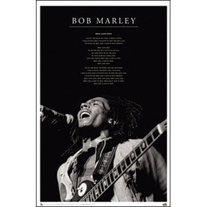 Poster Bob Marley Iron Lion