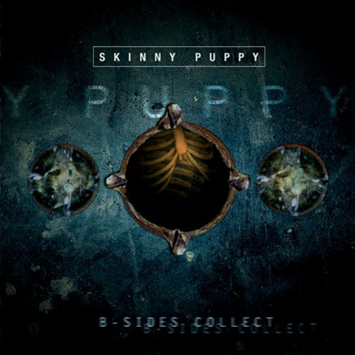 Skinny Puppy B Sides Collection