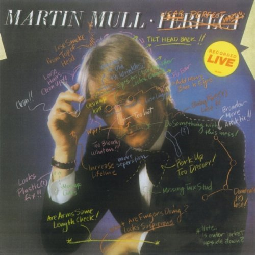 Martin Mull Near Perfect Perfect