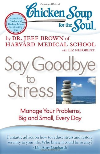 Dr Jeff Brown Chicken Soup For The Soul Say Goodbye To Stress Manage Your Problems Big