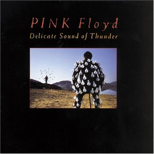 Pink Floyd Delicate Sound Of Thunder Live 2 CD Set