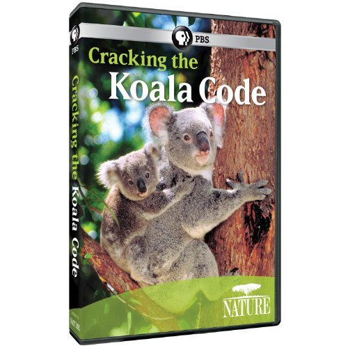 Cracking The Koala Code Nature Nr