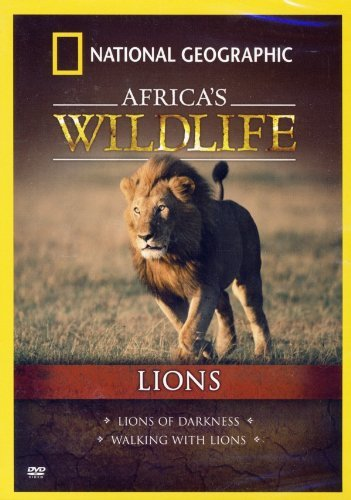 Africa's Wildlife Lions National Geographic