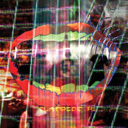 Animal Collective Centipede Hz 2 Lp Incl. Mp3 Download