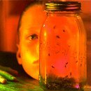 Alice In Chains Jar Of Flies CD Rom For Pc Interactive Audio CD