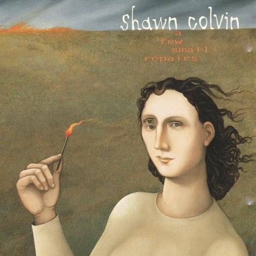 Colvin Shawn Few Small Repairs