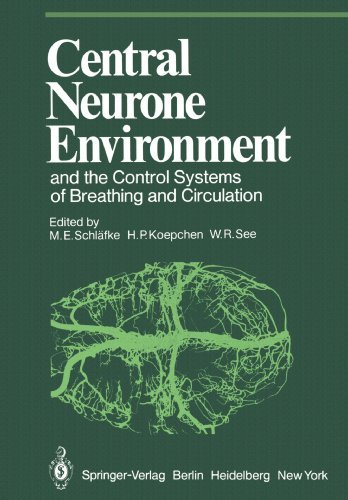 M. E. Schlafke Central Neurone Environment And The Control System Softcover Repri