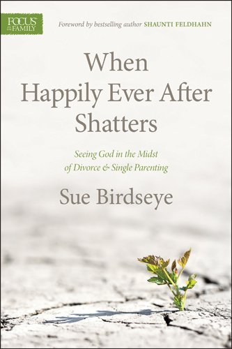 Sue Birdseye When Happily Ever After Shatters Seeing God In The Midst Of Divorce & Single Paren