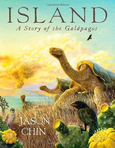 Jason Chin Island A Story Of The Galapagos