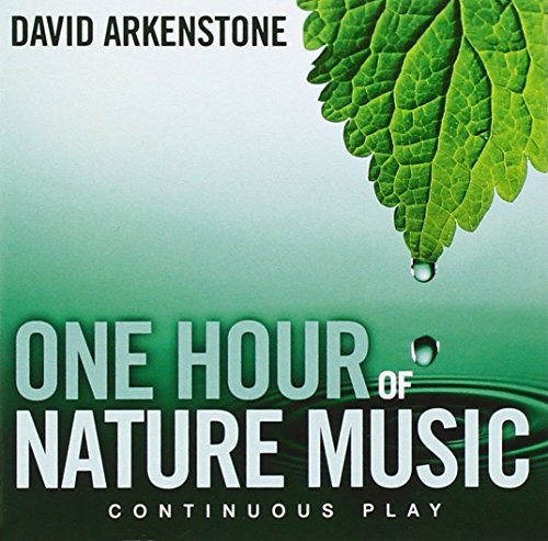 David Arkenstone One Hour Of Nature Music For