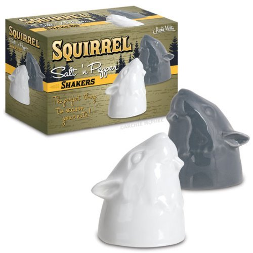 Gift Salt & Pepper Shakers Squirrel 6 Pack