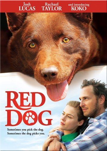 Red Dog Lucas Taylor Koko Ws Pg