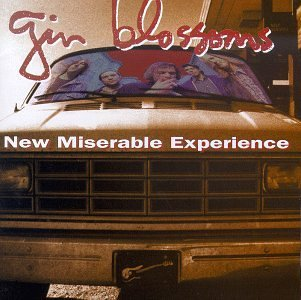 Gin Blossoms New Miserable Experience