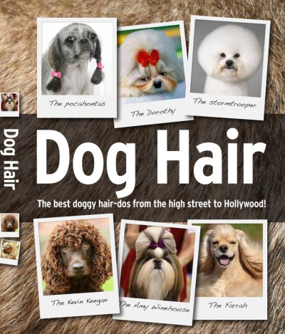 Spruce Dog Hair The Best Doggy Hair Dos For Fashion Conscious Hou