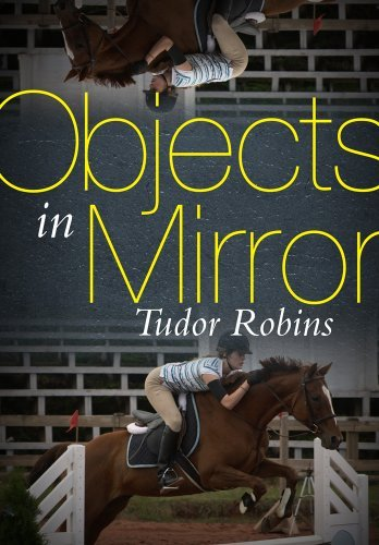 Tudor Robins Objects In Mirror