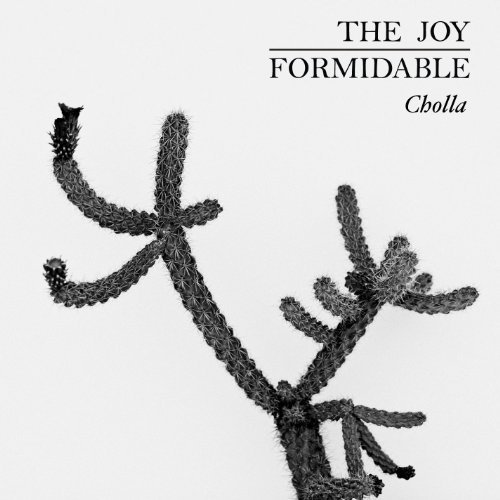 Joy Formidable Cholla