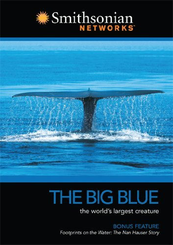 Smithsonian Channel Big Blue Smithsonian Channel Big Blue Nr
