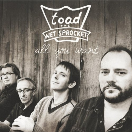 Toad The Wet Sprocket All You Want