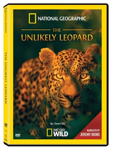 Unlikely Leopard National Geographic Nr