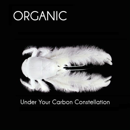 Organic Under Your Carbon Constellatio