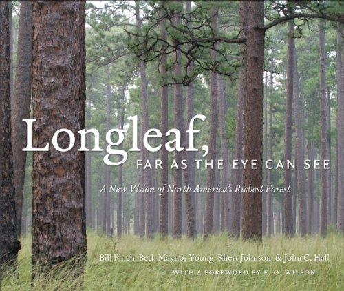 Bill Finch Longleaf Far As The Eye Can See A New Vision Of North America's Richest Forest